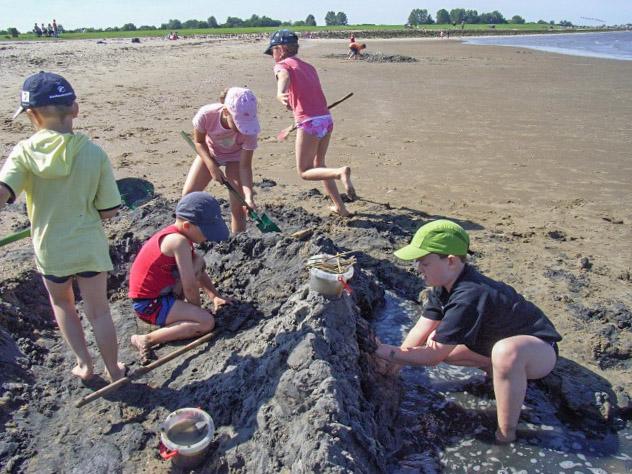 Kinder bauen eine Burg im Watt von Otterndorf